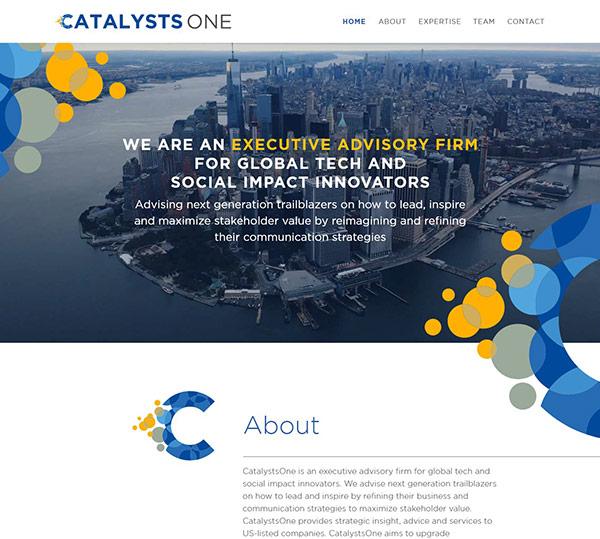 velvetmade CatalystsOne website design thumbnail