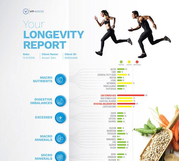 velvetmade longevity report infographic design thumbnail